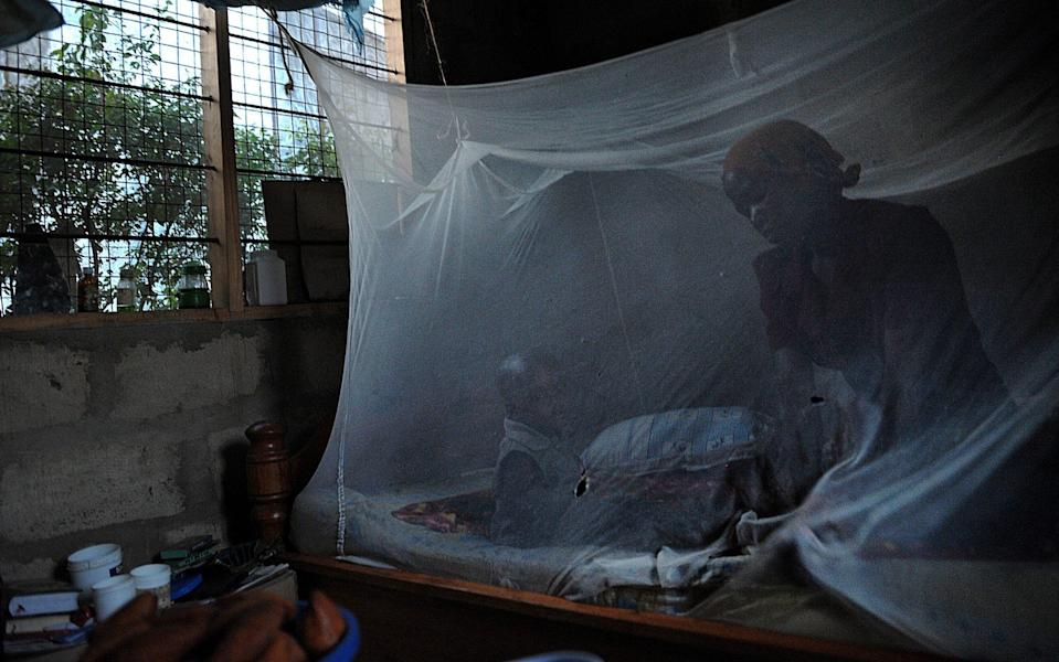 Bed nets, pictured here in Tanzania, work but to really make progress against malaria, a vaccine is priority number one, said the WHO's Dr Pedro Alonso - TONY KARUMBA/AFP