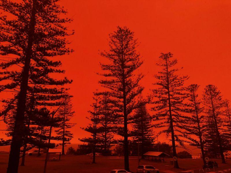 A photo of Port Macquarie where a fire has just started to burn as skies burn red.