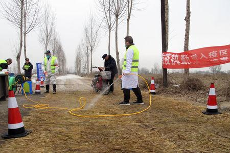 Police officers and workers in protective suits are seen at a checkpoint on a road leading to a farm owned by Hebei Dawu Group where African swine fever was detected, in Xushui