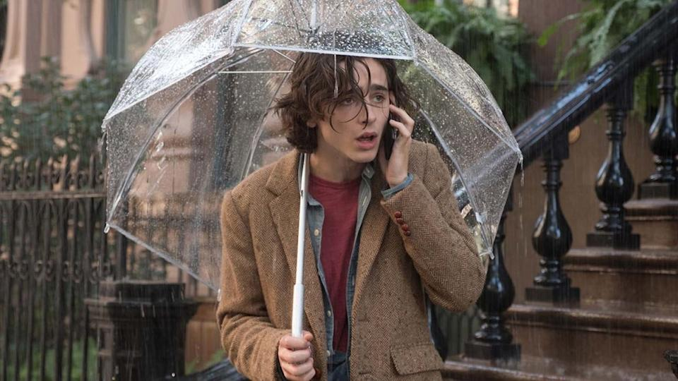Timothee Chalamet in A Rainy Day In New York (Credit: Amazon)