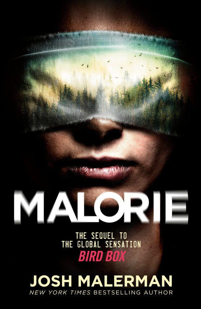 """""""Malorie"""" is a sequel to the popular """"Bird Box,"""" which was made into a Netflix movie. It continues where the first left off, with Malorie facing what's next in this strange world.<br /><br />You can read more about this book on <a href=""""https://fave.co/3kiIULV"""" target=""""_blank"""" rel=""""noopener noreferrer"""">Goodreads</a> and find it for $26 at <a href=""""https://fave.co/3kvftGc"""" target=""""_blank"""" rel=""""noopener noreferrer"""">Bookshop</a>. It's also available at <a href=""""https://amzn.to/34hRIMv"""" target=""""_blank"""" rel=""""noopener noreferrer"""">Amazon</a>."""