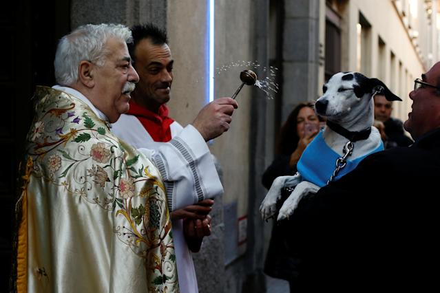 <p>A priest blesses a dog outside San Anton Church in Madrid, Spain, Jan. 17, 2018. (Photo: Susana Vera/Reuters) </p>