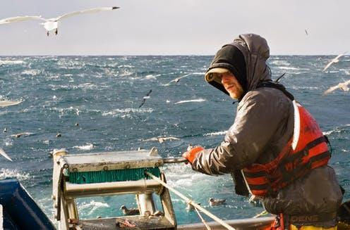 """<span class=""""caption"""">All at sea.</span> <span class=""""attribution""""><a class=""""link rapid-noclick-resp"""" href=""""https://www.shutterstock.com/image-photo/commercial-fishing-89814223"""" rel=""""nofollow noopener"""" target=""""_blank"""" data-ylk=""""slk:Photomatz/Shutterstock"""">Photomatz/Shutterstock</a></span>"""