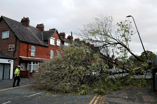 <p>A police officer stands next to a fallen tree as storm Ophelia passes Sale, Britain, Oct. 16, 2017. (Photo: Phil Noble/Reuters </p>