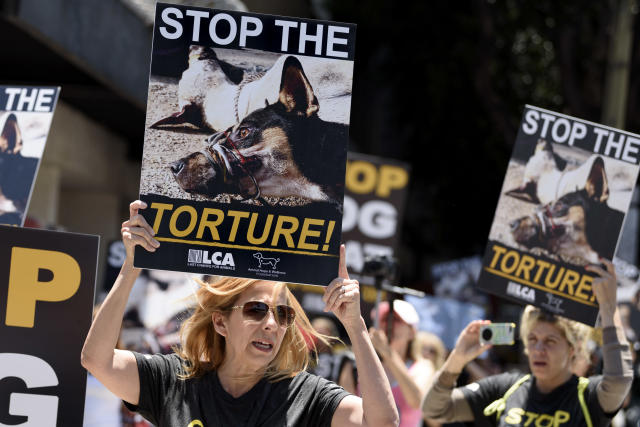 Animal rights activists outside the Chinese Consulate General in Los Angeles protest China's dog meat trade and its Yulin Dog Meat Festival. (Photo: Ronen Tivony/NurPhoto via Getty Images)
