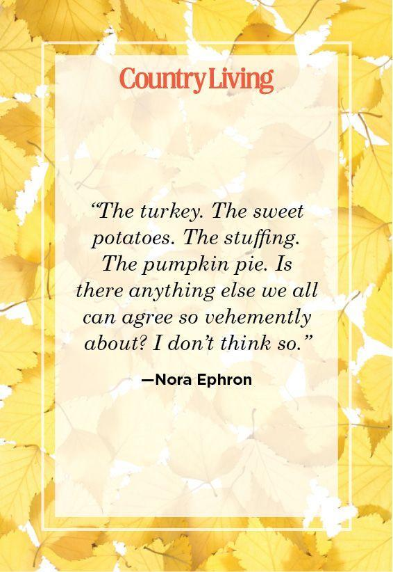 """<p>""""The turkey. The sweet potatoes. The stuffing. The pumpkin pie. Is there anything else we can agree so vehemently about? I don't think so.""""</p>"""