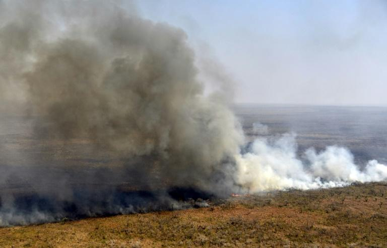 A fire blazes near Charagua in Bolivia in August 2019 (AFP Photo/Aizar RALDES)