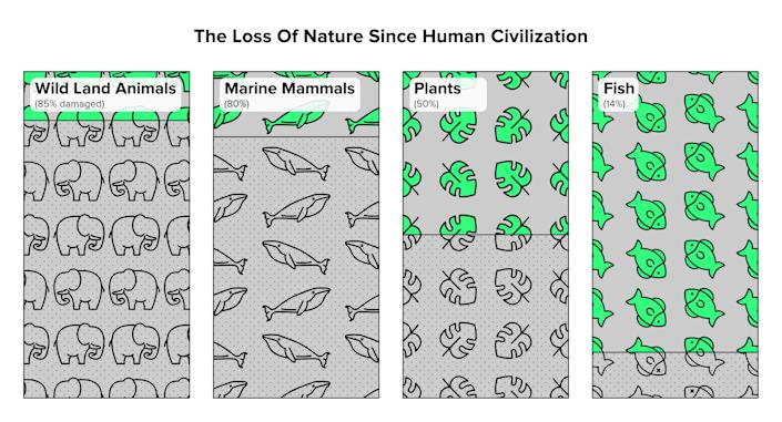 Humans have caused the loss of around 80 percent of wild land and marine mammals, and half of plants.Source:Yinon M. Bar-On, Rob Phillips, and Ron Milo, PNAS, 2018 (Photo: Jade Marucut for HuffPost)