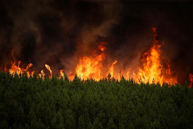 <p>Flames of an approaching forest fire are seen near the village of Carvoeiro, near Castelo Branco, Portugal, July 25, 2017. (Rafael Marchante/Reuters) </p>
