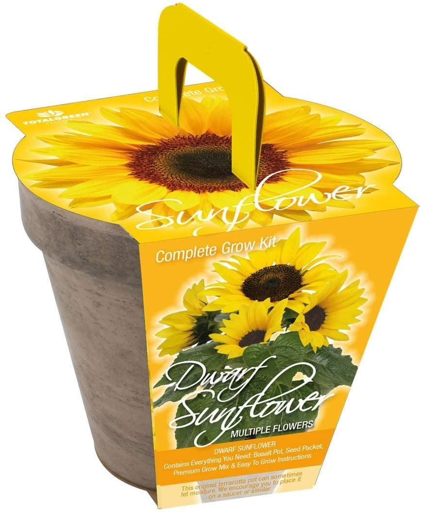 "<p>Yup, sunflowers are edible! This <a href=""https://www.popsugar.com/buy/Quality-Dwarf-Size-Sunflower-Basalt-Grow-Kit-571564?p_name=Quality%20Dwarf%20Size%20Sunflower%20Basalt%20Grow%20Kit&retailer=amazon.com&pid=571564&price=17&evar1=casa%3Aus&evar9=46114279&evar98=https%3A%2F%2Fwww.popsugar.com%2Fhome%2Fphoto-gallery%2F46114279%2Fimage%2F47449687%2FQuality-Dwarf-Size-Sunflower-Basalt-Grow-Kit&prop13=api&pdata=1"" class=""link rapid-noclick-resp"" rel=""nofollow noopener"" target=""_blank"" data-ylk=""slk:Quality Dwarf Size Sunflower Basalt Grow Kit"">Quality Dwarf Size Sunflower Basalt Grow Kit </a> ($17) will help you easily grow one in weeks. </p>"