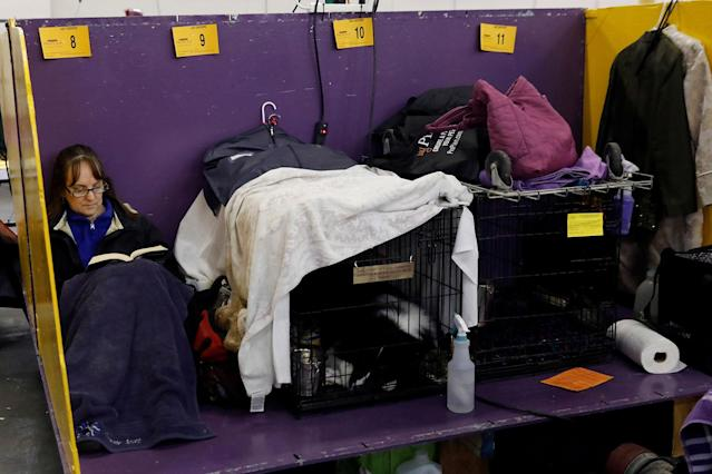 <p>A woman reads a book in the benching area on Day One of competition at the Westminster Kennel Club 142nd Annual Dog Show in New York, Feb.12, 2018. (Photo: Shannon Stapleton/Reuters) </p>