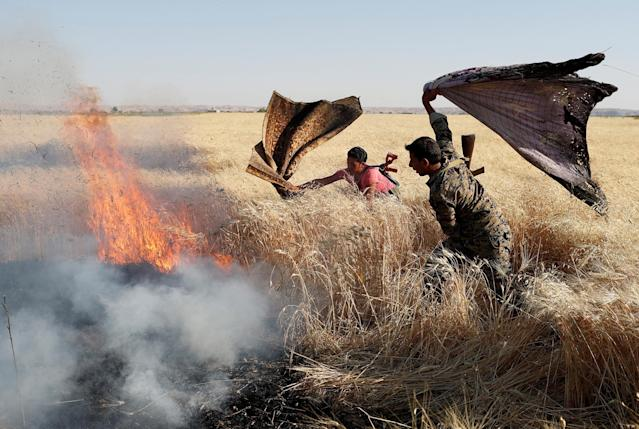 <p>Kurdish fighters from the People's Protection Units (YPG) extinguish a fire in a wheat field burned during clashes with Islamic State militants in Raqqa, Syria, June 15, 2017. (Photo: Goran Tomasevic/Reuters) </p>