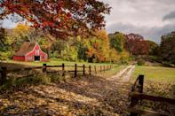 <p>Fall leaves, check! Red barn, check! </p>