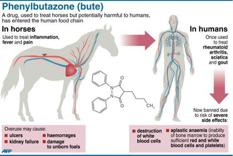 Factfile on the drug phenylbutazone. A spokesman for the French agriculture ministry told AFP that several horse carcasses containing the drug have probably ended up being eaten by consumers