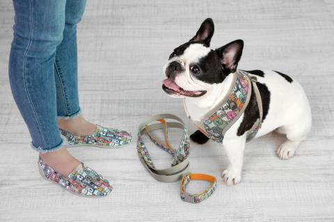 BOBS from Skechers Footwear and Pet Accessory Charity Collection Arrives in Petco Stores