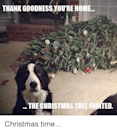 """<p>Hey, pet parents: Your furry friend is most likely <em>pup </em>to no good while you're not home. Avoid these kinds of disasters altogether by picking up one of these <a href=""""https://www.goodhousekeeping.com/holidays/christmas-ideas/a25335076/argos-half-christmas-trees/"""" rel=""""nofollow noopener"""" target=""""_blank"""" data-ylk=""""slk:half Christmas trees"""" class=""""link rapid-noclick-resp"""">half Christmas trees</a> instead of your typical evergreen.</p>"""