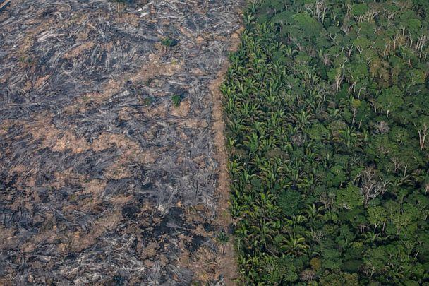 PHOTO: A section of the Amazon rain forest that has been decimated by wild fires is seen, Aug. 25, 2019 in the Candeias do Jamari region near Porto Velho, Brazil. (Victor Moriyama/Getty Images)