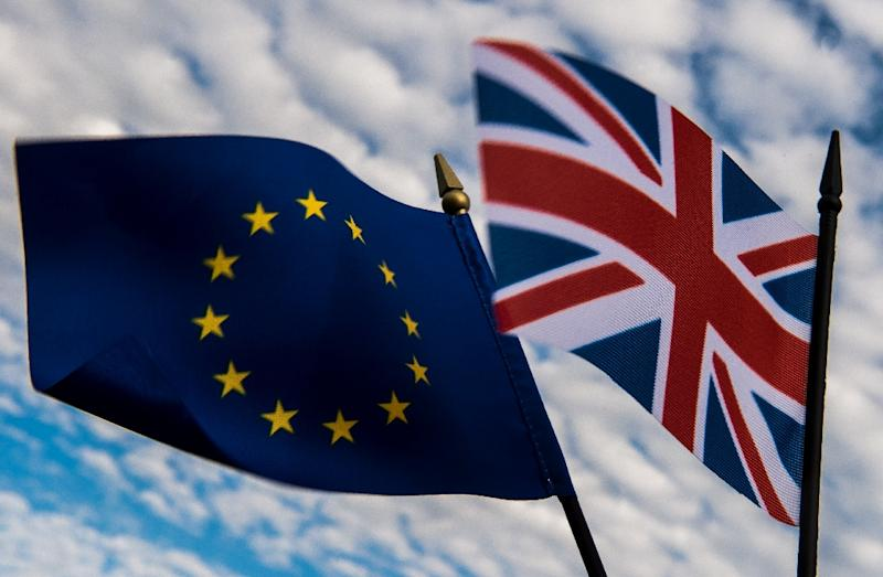 Nearly four million EU nationals currently live in Britain and around one million Britons live elsewhere in the EU (AFP Photo/PHILIPPE HUGUEN)