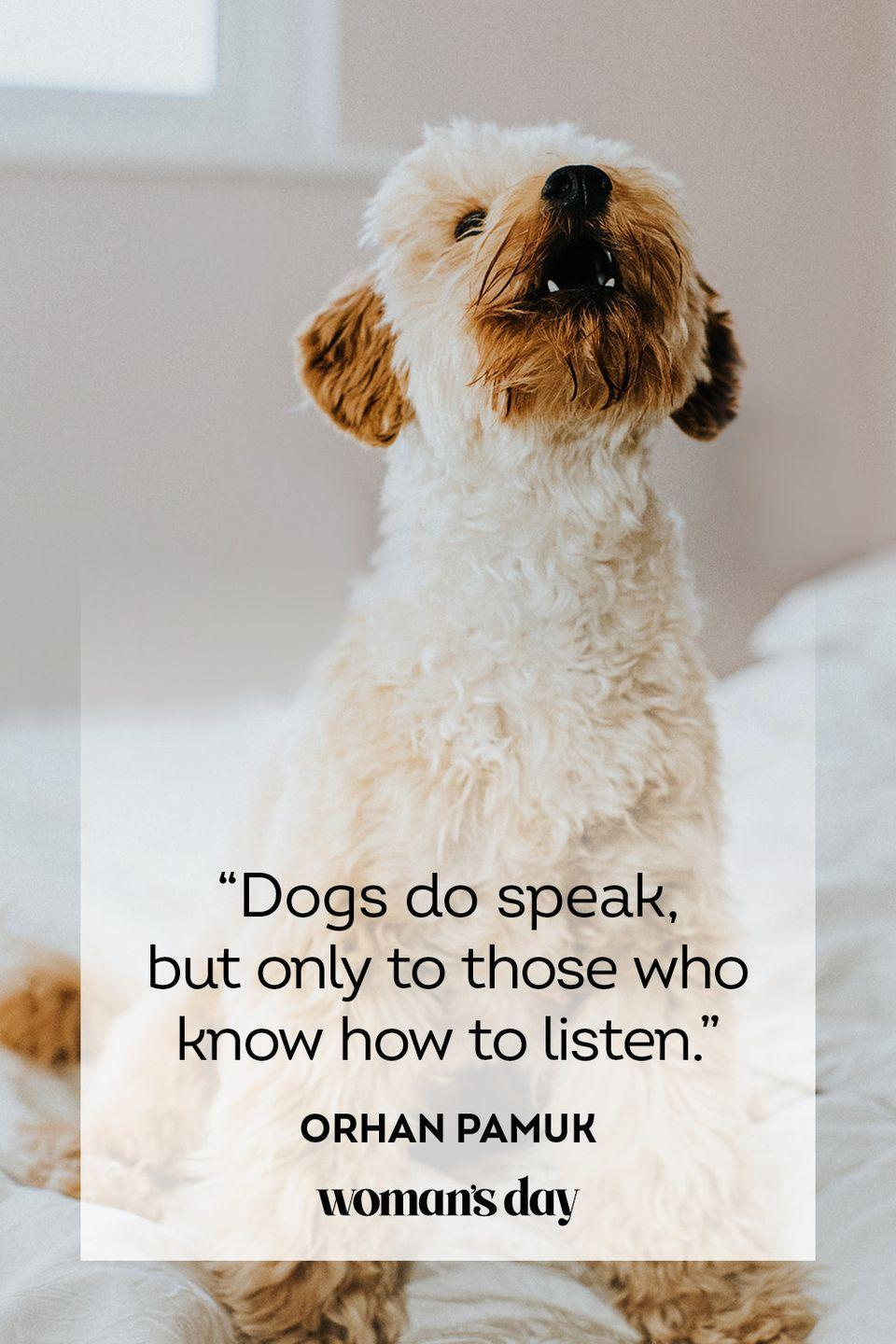"""<p>""""Dogs do speak, but only to those who know how to listen.""""</p>"""