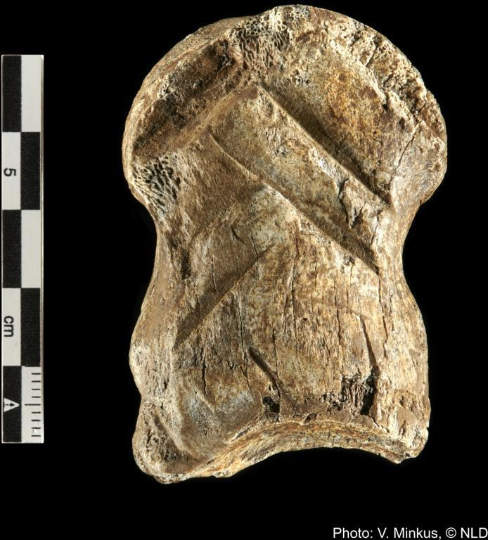The bone is described as 'one of the most complex cultural expressions in Neanderthals'