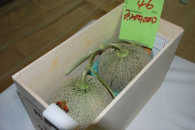 Pair of Japanese premium melons sell for record $29,300