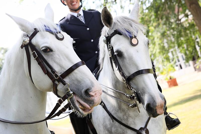 The PDSA commended Met Police horses Grace and Peston for their lengthy service including during the 2011 London riots (PDSA)