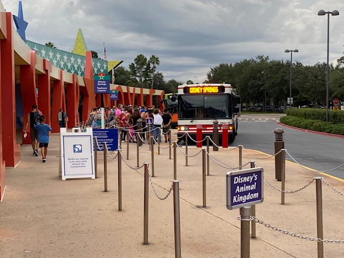 A view of bus stops at Disney World's All-Star Movies Resort.