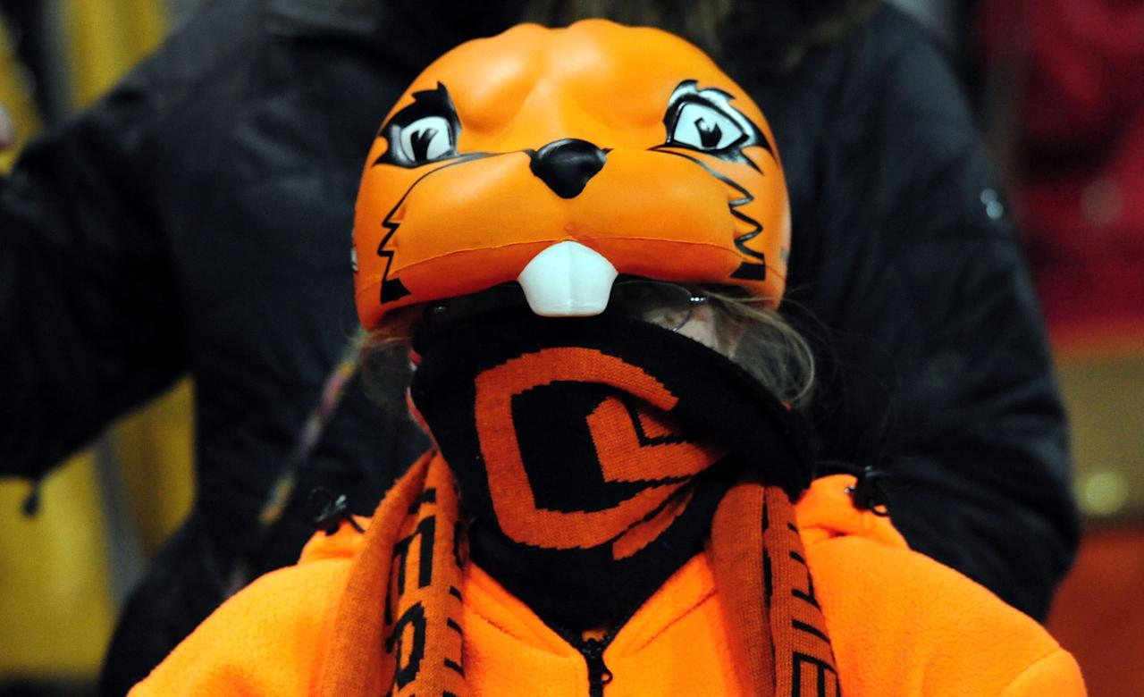 EUGENE, OR - NOVEMBER 23: An Oregon State Beavers fan looks on from the stands during the third quarter of the game between the Oregon State Beavers and the Washington Huskies at Reser Stadium on November 23, 2013 in Eugene, Oregon. (Photo by Steve Dykes/Getty Images)