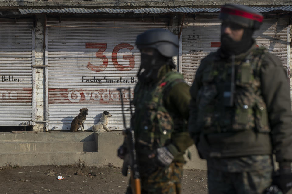 Street dogs enjoy the morning sun on a cold winter day as Indian army soldiers stand guard near the site of a gun battle on the outskirts of Srinagar, Indian controlled Kashmir, Wednesday, Dec. 30, 2020. A gun battle between rebels and government forces overnight killed three rebels on the outskirts of Srinagar on Wednesday, officials said. (AP Photo/ Dar Yasin)