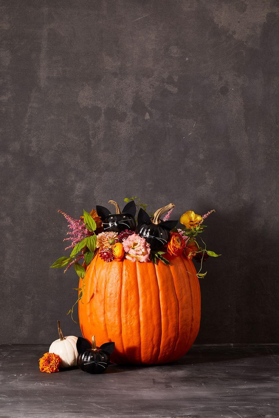 """<p>If you want to do less carving but still have a show-stopping pumpkin, then this Kitten pumpkin is pur-fect! </p><p><strong>Mini Kitten Pumpkins:</strong> Take your mini pumpkins and spray paint them black with two coats of paint. Add rhinestones for the eyes, thread for the whiskers and pom pom noses with a hot glue gun. For the ears, you can cut out triangles from velour paper, attach toothpicks to them with a hot glue gun, and stick the ears into the tops of the pumpkin.</p><p><strong>Main Pumpkin:</strong> Begin by carving a circle on the top of your pumpkin and taking out all the seeds. Fill the pumpkin with crumbled newspaper and nestle the kitten pumpkins on top. Take water tubes and fill them with water for the fresh flowers and place them inside the pumpkin.</p><p><a class=""""link rapid-noclick-resp"""" href=""""https://www.jamaligarden.com/floral-water-tube.html"""" rel=""""nofollow noopener"""" target=""""_blank"""" data-ylk=""""slk:SHOP WATER TUBES"""">SHOP WATER TUBES</a></p>"""