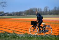 A girl cycles past a flower field in Lisse