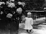 <p>At the age of one in 1922, Prince Philip of Greece shows an interest in flowers outside.</p>