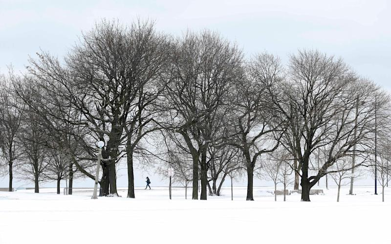 Lake Michigan in Chicago got its first significant snowfall since December on Monday - Credit: AP