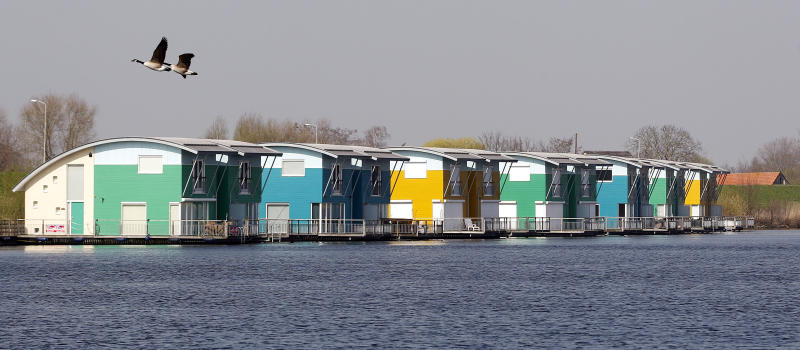 In this photo taken Wednesday, March 28, 2012 birds fly above floating homes on the River Maas in Maasbommel, Netherlands. The Netherlands, a third of which lies below sea level, has been managing water since the Middle Ages and has thus emerged as a pioneer in the field, exporting its expertise to Indonesia, China, Thailand, Dubai and the Republic of the Maldives, an Indian Ocean archipelago that with a maximum elevation of about 2 meters (8 feet) is the world's lowest country. (AP Photo/Bas Czerwinski)