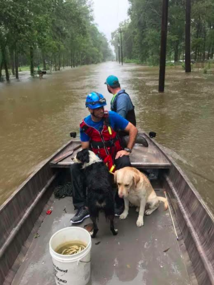 Shazia Ashraf watched from a boat as her mattress floated in six feet of water in her Houston home.