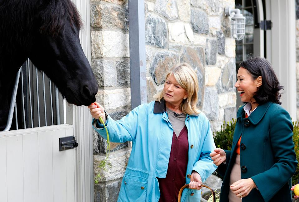 """TODAY -- Pictured: (l-r) Martha Stewart and Ann Curry appear on NBC News' """"Today"""" show  (Photo by Peter Kramer/NBC/NBCU Photo Bank via Getty Images)"""