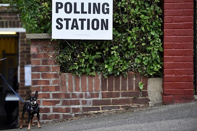 <p>A dog waits outside a private garage which is being used as a polling station in Coulsdon, on general election day in south London, Britain, June 8, 2017. (Photo: Hannah McKay/Reuters) </p>