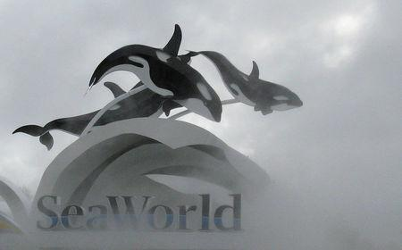 FILE PHOTO: The SeaWorld amusement park is pictured in Orlando