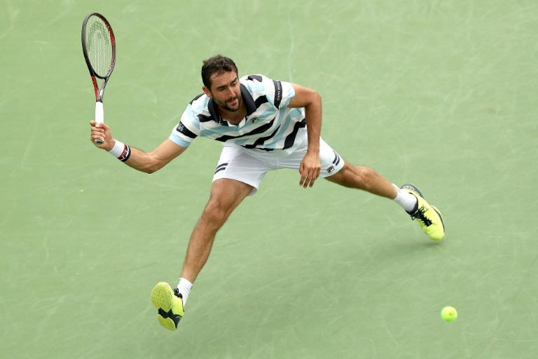 Marin Cilic will face former world number one Novak Djokovic in a semi-final clash at the ATP-WTA Cincinnati Masters