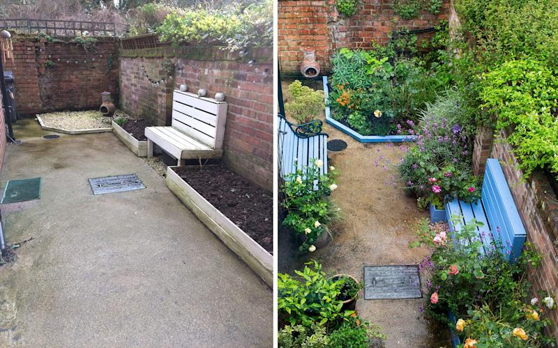 Before and after: The glorious transformation of Loades' garden in Hull, UK - Neil Hepworth