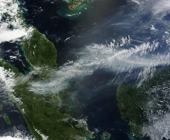 On June 19, NASA's Terra and Aqua satellites captured striking images of the wildfires' smoke from space.