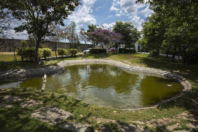 A pond decorates the grounds of the Toca da Raposa 2 training center where Chile's national soccer team will be based during the 2014 FIFA World Cup tournament in Belo Horizonte, Brazil, Thursday, Feb. 13, 2014. (AP Photo/Bruno Magalhaes)
