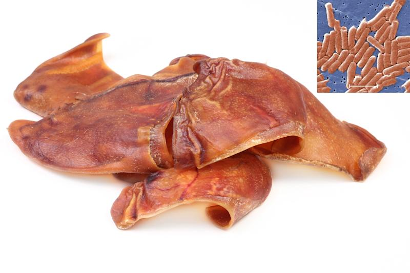 CDC Warns Against Buying Pig Ear Dog Treats Amid Multi-State Salmonella Outbreak