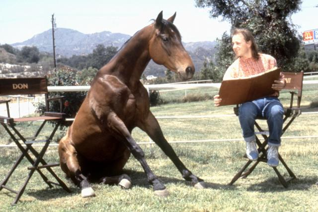 Goldthwait and his equine co-star in <em>Hot to Trot</em>. (Photo: Warner Bros./courtesy Everett Collection)