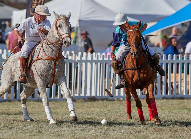 the-victory-cup-polo-match-facebook-620.jpg