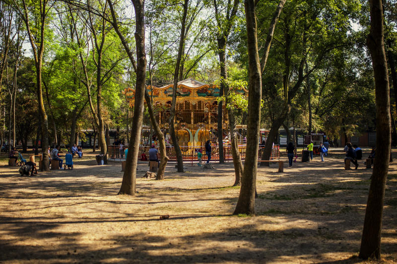 This is a Carousel in the middle of Chapultepec park, is in the middle of the forest on its own, we can see trees and in the middle the Carousel.