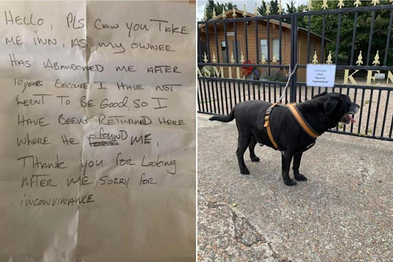 The dog was abandoned with a note from its owner (Jasmil Kennels)
