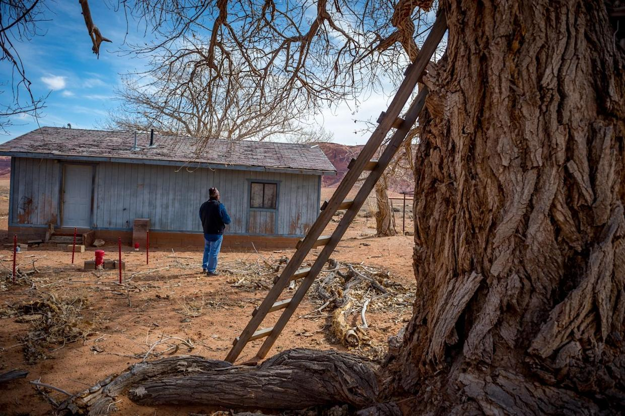 Dariel Yazzie on his family's land. (Photograph by Mary F. Calvert)