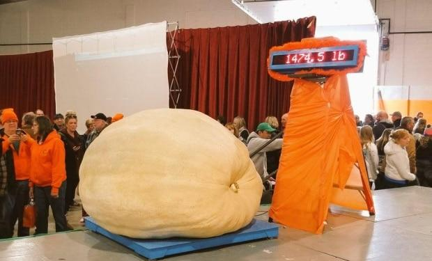 Smoky Lake Great White North Pumpkin Weigh-off/Facebook