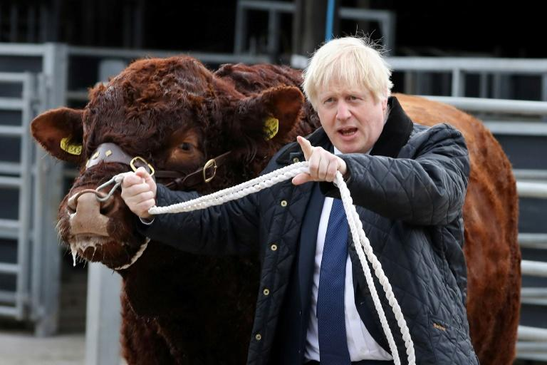 Prime Minister Boris Johnson is struggling with his 'do or die' effort to pull Britain out of the European Union (AFP Photo/Andrew Milligan)